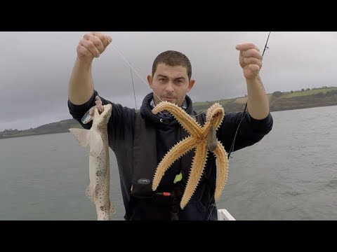 Winter Boat Fishing - Sea Fishing Cornwall