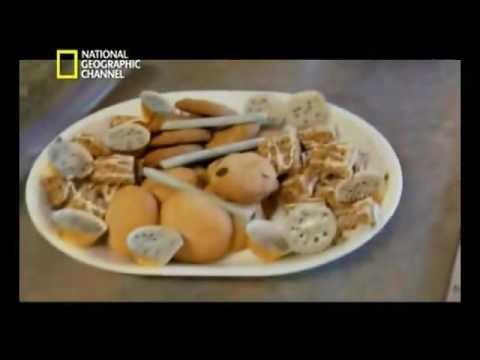 Bastidores Maconha  - National Geografic