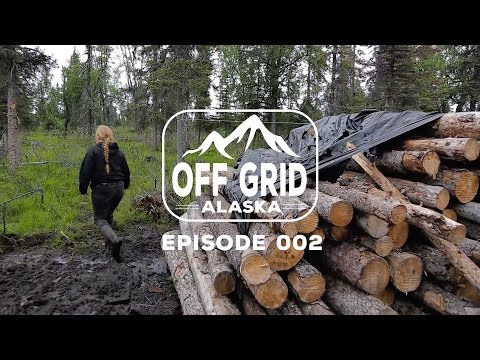 THE HARSH REALITY | Off Grid Alaska 002