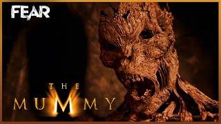 видео The Mummy