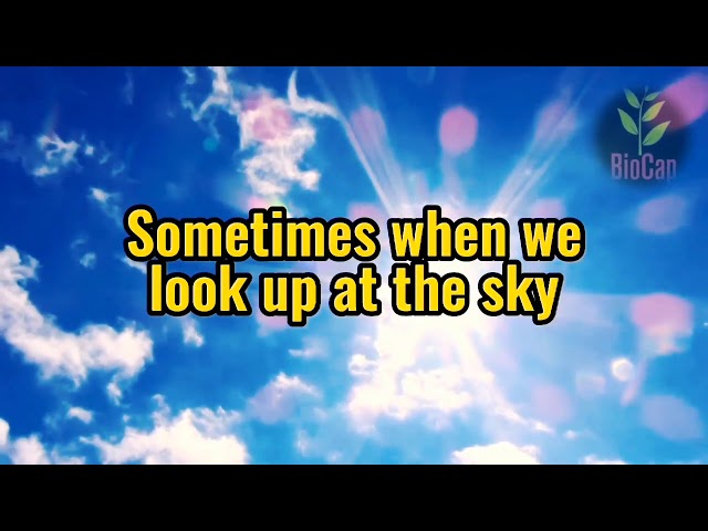 Sometimes when we look up at the sky, we see tiny floating objects in eye!! What are they?