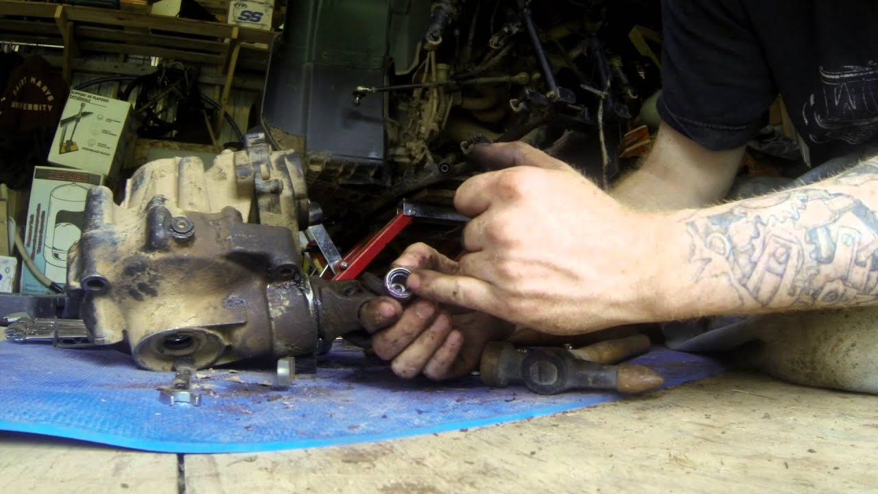 hight resolution of how to front differential rebuild for grizzly 660