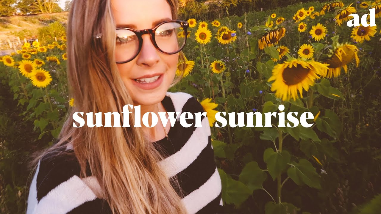 Sunflower Sunrise, Etsy Collaboration & Tampon Discovery | ad