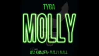 TYGA ft WIZ KHALIFA and MALLY MALL - MOLLY. (INSTRUMENTAL).