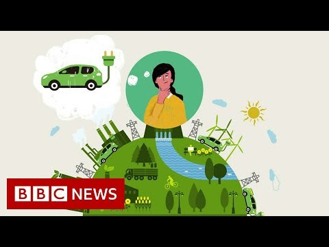 Should you buy an electric car? - BBC News