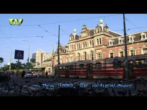 City tour The Hague - Den Haag