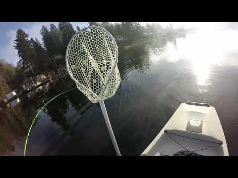 Lake Stevens Cutthroat Trout Hobie Pro Angler 14 1/1/18