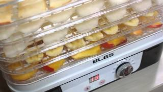 식품건조기추천 - 블레스 식품건조기