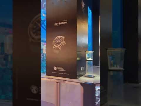 Dubai Aquarium Inside The World's Largest Shopping Mall  🐟🦈