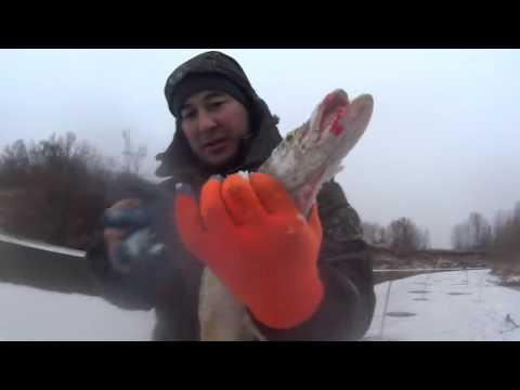 видео: Первый лед на реке, выехали за налимом а поймали щуку !!! Во дела !!!