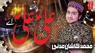Sawari ali ki new manqabat mola ali 13 rajab manqabat jawwad