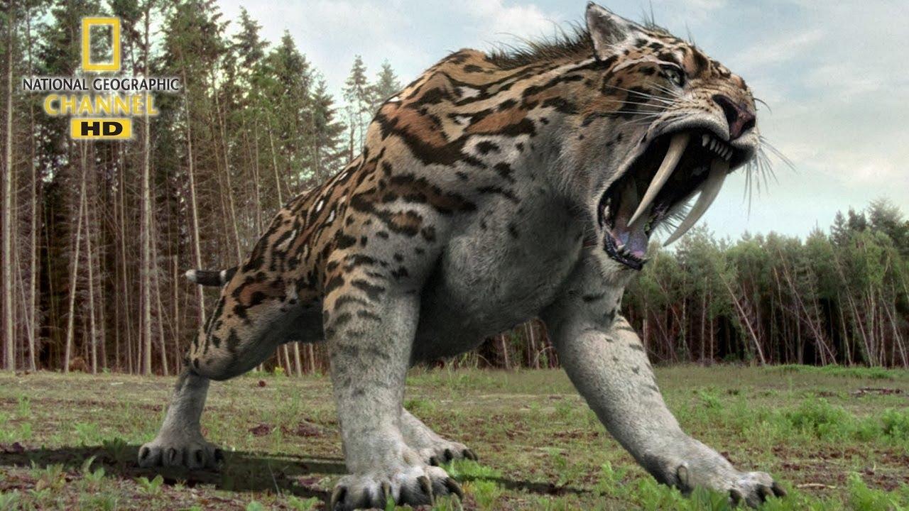 National geographic Documentary - Prehistoric predators - Wildlife Animals