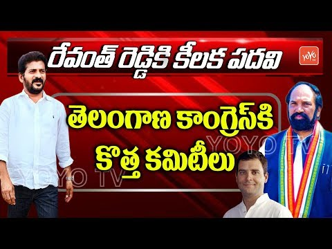 Revanth Reddy as Telangana Congress Working President | Congress Appointed New Committees | YOYO TV
