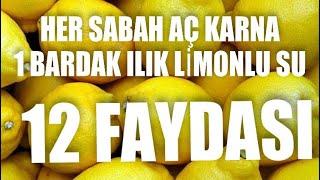 Limonlu Su Her Sabah Aç Karna 1 Bardak ılık Limonlu Su Içmenin 12 Mucizevi Fayda
