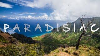 P A R A D I S I A C - Tropical Adventure Stimulant