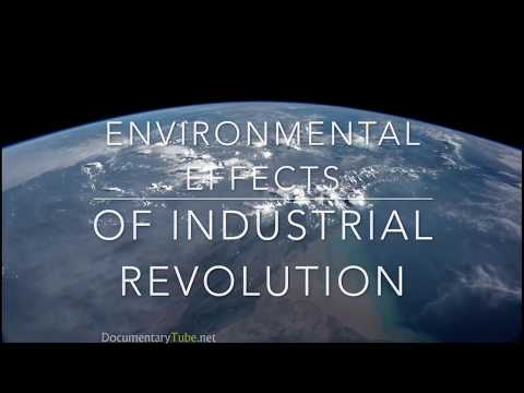 Environmental Effects of Industrial Revolution