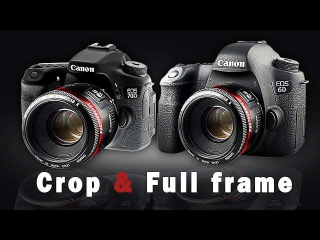 So sánh máy ảnh Canon 70D và Canon 6D - Chất lượng ảnh của dòng full frame và Crop