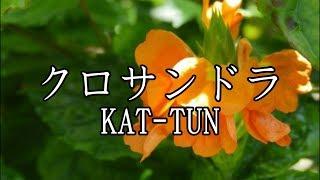 KAT-TUN「クロサンドラ」 歌ってみた