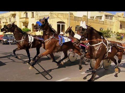 Horse Racing  2015 Victoria, Gozo, Malta
