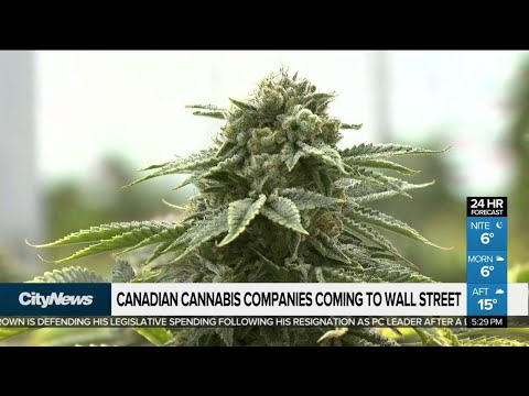 Canadian Cannabis Companies Coming To Wall Street