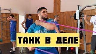 Тренировка Абдулрашида Садулаева shorts