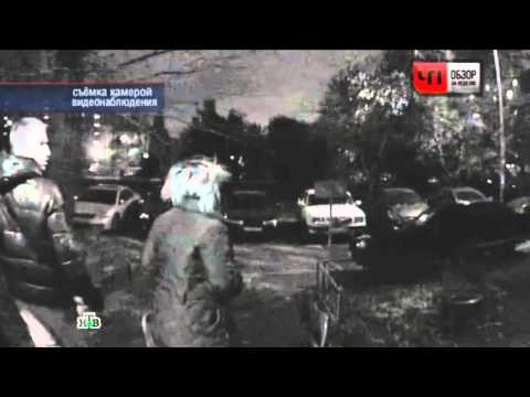 Убийство в Бирюлево