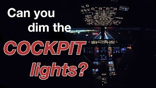 Can you DIM THE COCKPIT LIGHTS? Explained by CAPTAIN JOE