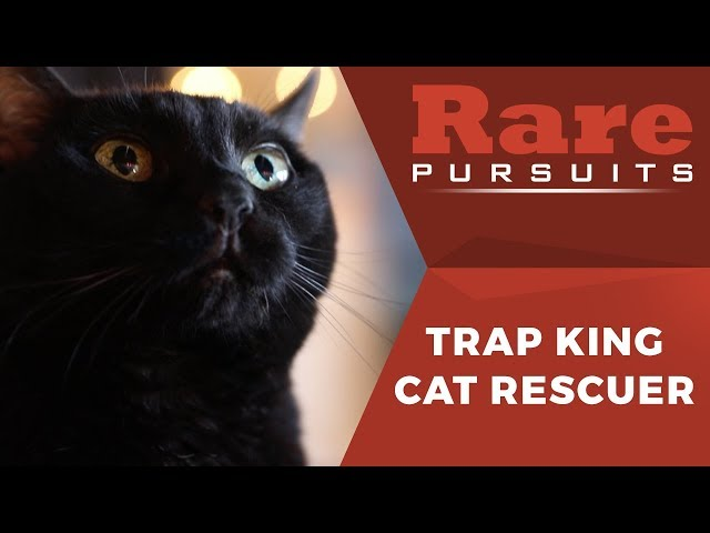 The Trap King's Unique Method to Rescuing Cats | Rare Pursuits