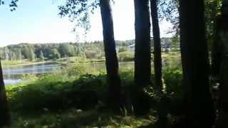 Новая Москва, деревня Каменка, московская прописка, лес, природа, пение птиц(, 2015-06-17T21:55:40.000Z)