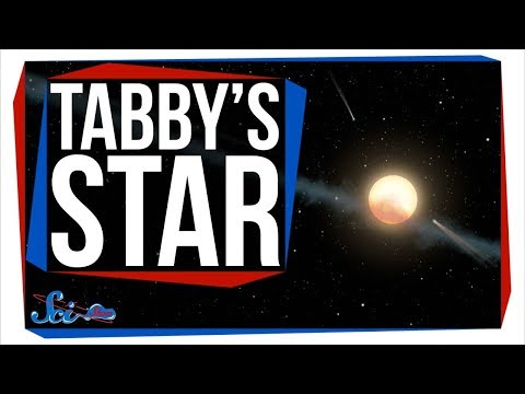A New Idea About Tabby's Star!