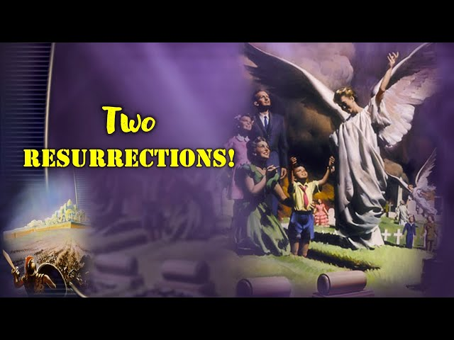 Two Resurrections | Professor Sharath Babu