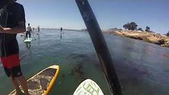 Stand Up Paddle Boarding at Santa Cruz