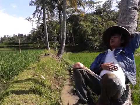 Lipsing petani cianjur ,orang biasa zoel anggara