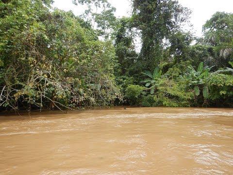 Speedboat on Tortuguero River from Manatus Hotel - Costa Rica Trip