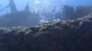 山梨県本栖湖でスキューバ,淡水ダイビングの新しい楽しみとは?