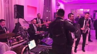 Orkestar Skorpioni - Muzicka zabava Nis Resimi