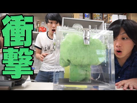 Science - How A Slime Transforms in VACUUM STATE from YouTube · Duration:  5 minutes 44 seconds