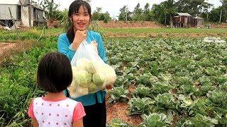 Nhìn thấy thu hoạch Bắp Cải xin vào Mót để có bữa cơm ngon | Thôn Nữ Miền Tây Tập 123