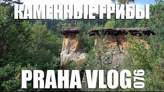 Чехия - Каменные грибы! или... Как мы собирали клещей! Kokořínské Pokličky Praha Vlog 076(Как мы отправились в лес по грибы, но нашли только каменные и ещё кучу клещей на Тане! :))) Место, где мы были..., 2016-08-23T09:33:51.000Z)