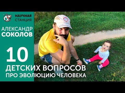 10 детских вопросов про эволюцию человека. Александр Соколов.