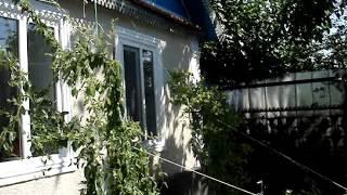 Продаю част. дом в русской части г. Слободзея, 2 часть.