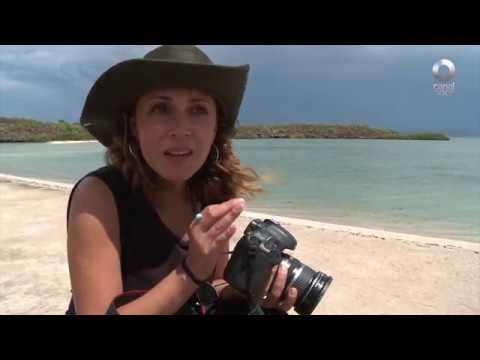 Detrás de un click - Guerrero Negro: Baja California Sur (02/08/2017)