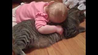 赤ちゃんをあやす猫、本当のお話し 先ずは見て 忍耐強くけなげですが  はらはらしますね。 thumbnail
