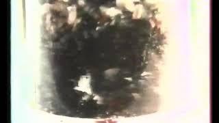 SEB Mini Hachoir   Haché Menu 1983