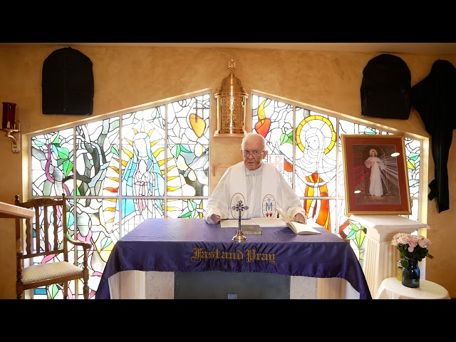 Day 4 - Fr. Michael Barry - Mercy Novena - Divine Mercy Chaplet