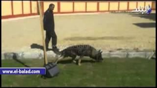 بالفيديو والصور.. قيادات أمن الأقصر يزورون «مدرسة المتفوقين»