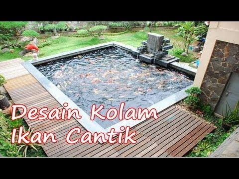 desain kolam ikan minimalis di lahan sempit belakang rumah