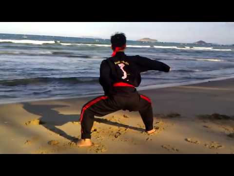Binh Dinh Kung Fu Traditional Part 4