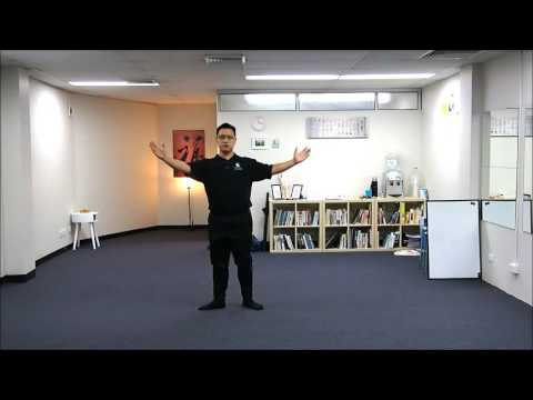 Wu Style Tai Chi Chuan 108 Movements Standard Form 44 Step Back