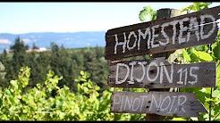 Oregon Wine Country: Columbia Gorge AVA